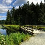 The Neighbourhood of Natural Beauty: Burke Mountain, Coquitlam