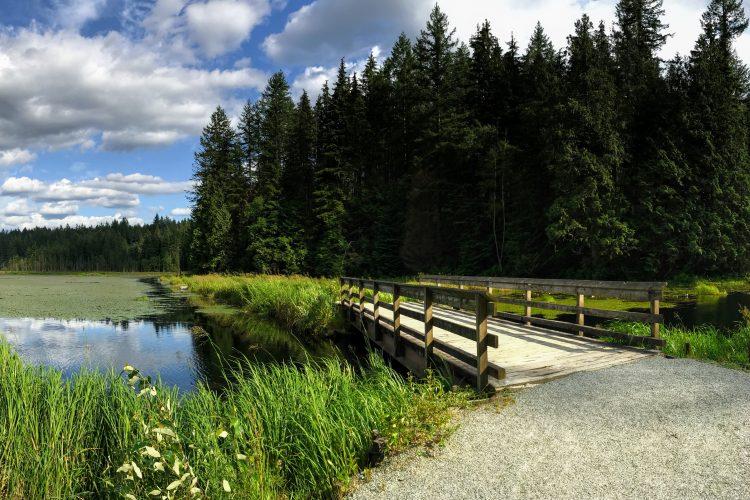 Minnekhada Regional Park, Coquitlam, BC.